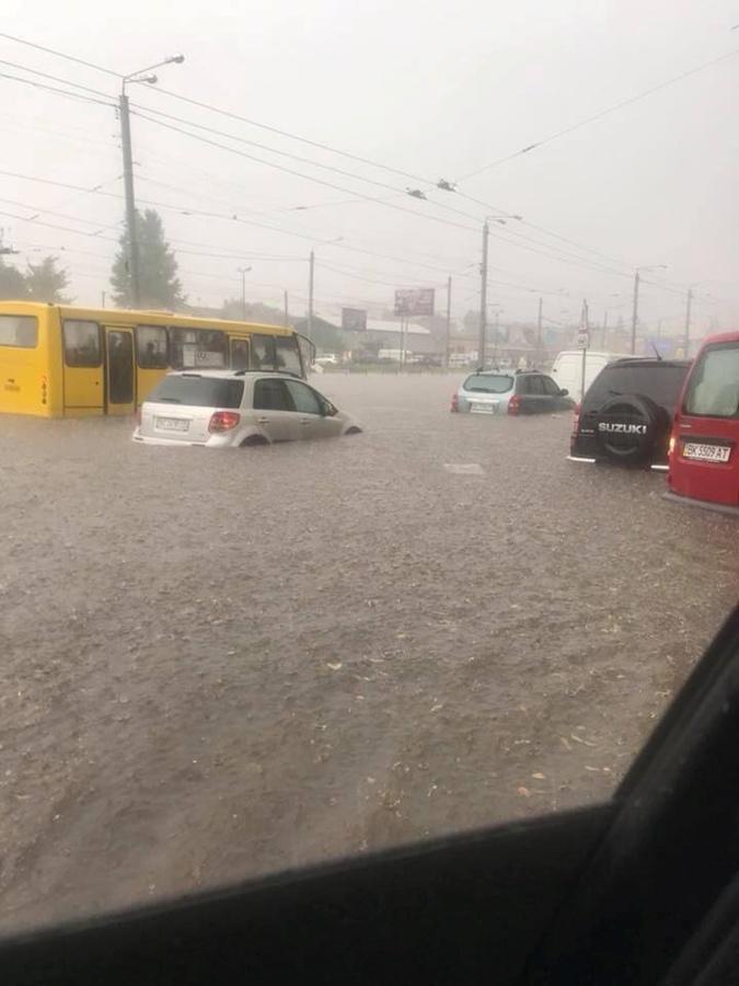 Во Львове после потопа люди начали болеть лептоспирозом [фото]