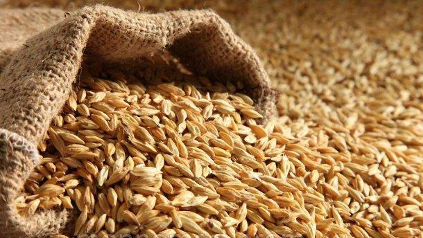 Тарифы на перевозку зерна по железной дороге в Украине намного выше, чем в Европе, – аграрии